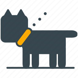 animal, dog, hobby, pet, walk icon