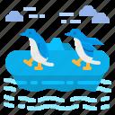 animal, iceland, kingdom, penguin, wildlife icon