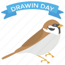 bird, darwin day, darwin day banner, evolution celebration, evolved spearow icon