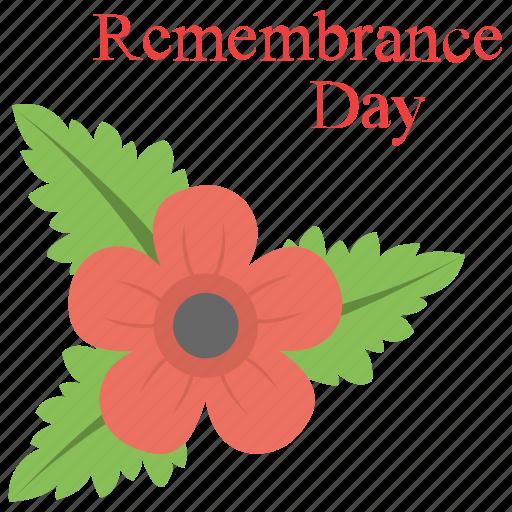 Plant Poppy Day Poppy Flower Red Poppy Remembrance Day Icon