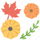 flower of myanmar, maple leaf, olive branch, orange daisy, thanksgiving icon