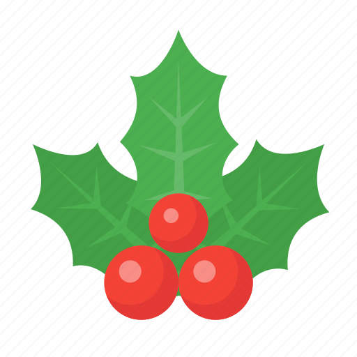 celebration, christmas, decoration, holiday, holidays, holly, xmas icon