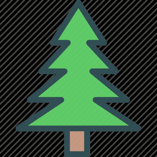christmas, pine, tree icon