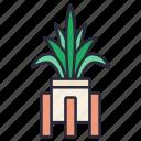 plant, green, decoration, garden, nature