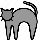 animal, cat, halloween, pet icon