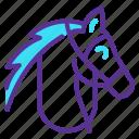 animal, horse, riding, stallion icon