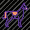 animal, farm, horse, stallion icon