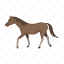 animal, horse, mammal, pet, steed icon
