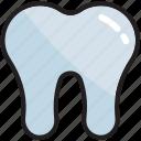 dental, dentist, health, healthcare, medical, teeth, tooth