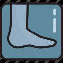 bones, foot, injury, ray, joint, x-ray, human feet