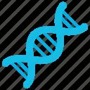 dna, gene, genetics, science, genome, chromosomes, molecule