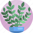 fern, leaf, house, green, plants, pot, indoor icon