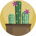house, decoration, potted, interior, plants, cactus, indoor icon