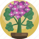 botany, exotic, floral, flowers, house, plants, tree