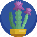 house, decoration, plants, illustration, cactus, flower, indoor icon