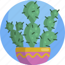 house, decoration, container, plants, cactus, green, indoor icon