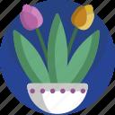 decoration, floral, flowers, house, houseplant, plants, vase icon
