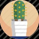 cactus, decorative, house, illustration, modern, plants, vase
