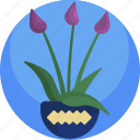 floral, vase, house, flowers, plants, indoor, color icon