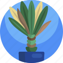 decoration, house, interior, leaf, nature, plants, vase