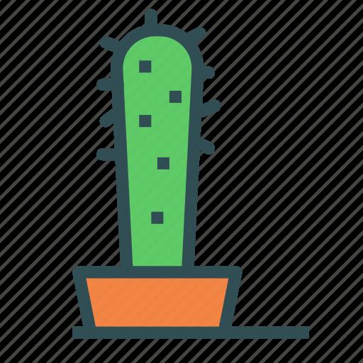 cactus, decoration, home, house, plant icon