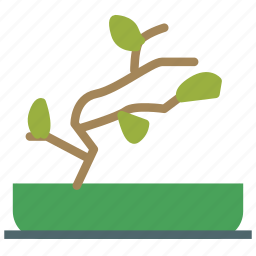 bonsai, decoration, home, house, plant icon