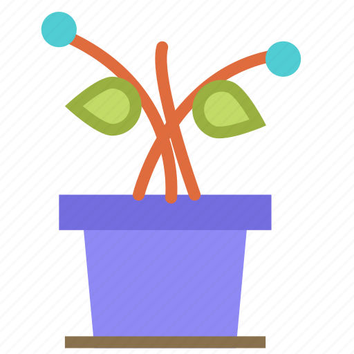 decoration, flower, home, house, plant icon