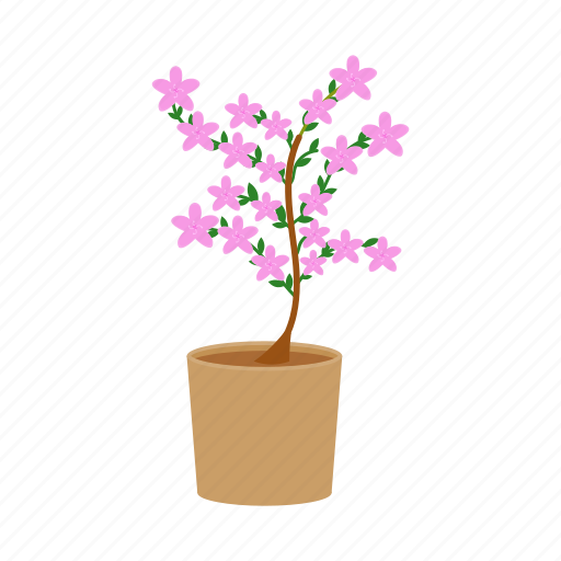 Blossom, flower, plant, potted icon - Download on Iconfinder