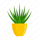 computer, floral, flower, pot, succulent, tree icon