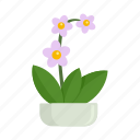 floral, flower, houseplant, orchid, tree icon