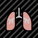 anatomy, breath, human, lungs, organ icon