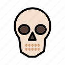 bone, head, human, organ, skeleton, skull icon