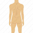 body, human body, naked, nude icon