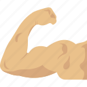 arm, biceps, exercise, fitness, muscle icon
