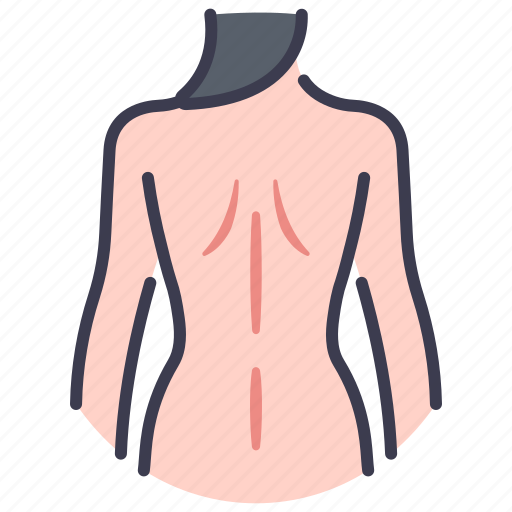 Anatomy, back, body, female, human, naked, women icon - Download on Iconfinder