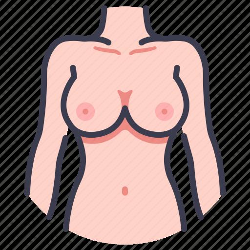Anatomy, body, diet, female, fitness, sexy, slim icon - Download on Iconfinder