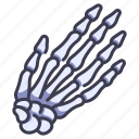 anatomy, body, bone, finger, hand, human, skeleton icon