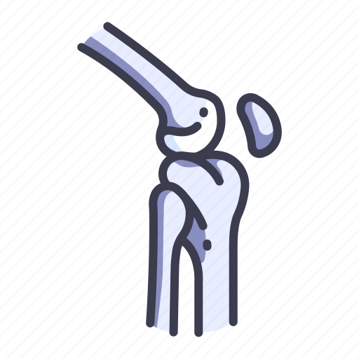 Anatomy, body, bone, joint, knee, leg, skeleton icon - Download on Iconfinder