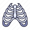 anatomy, body, bone, human, medical, rib, skeleton icon