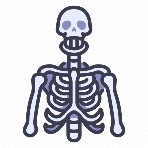 Anatomy, body, bone, bones, human, skeleton, skull icon - Download on Iconfinder