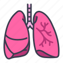 body, health, human, internal, lung, medical, organ icon