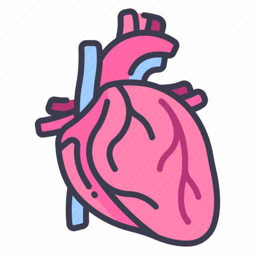 Body, cardiology, heart, human, internal, medical, organ icon - Download on Iconfinder
