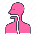 body, health, human, internal, medical, organ, throat icon
