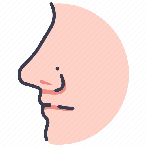 Body, face, human, medical, nose, smell icon - Download on Iconfinder