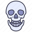 anatomy, body, bone, head, human, skeleton, skull icon