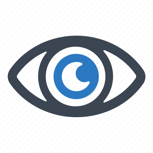 Eye, see, view, vision icon - Download on Iconfinder