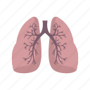 chest, human, lung, lungs, pneumonia, system, vascular icon