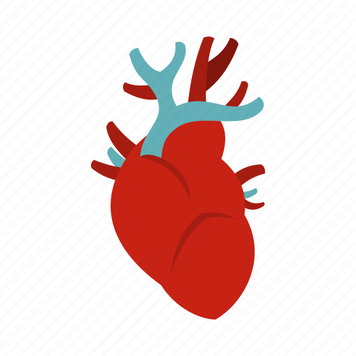 blood, heart, human, medical, organ, patient, vein icon