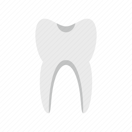 dent, dentist, human, molar, root, smile, tooth icon