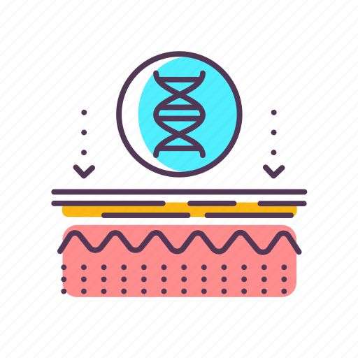 care, dermatology, dna, epidermis, genetics, layer, skin icon